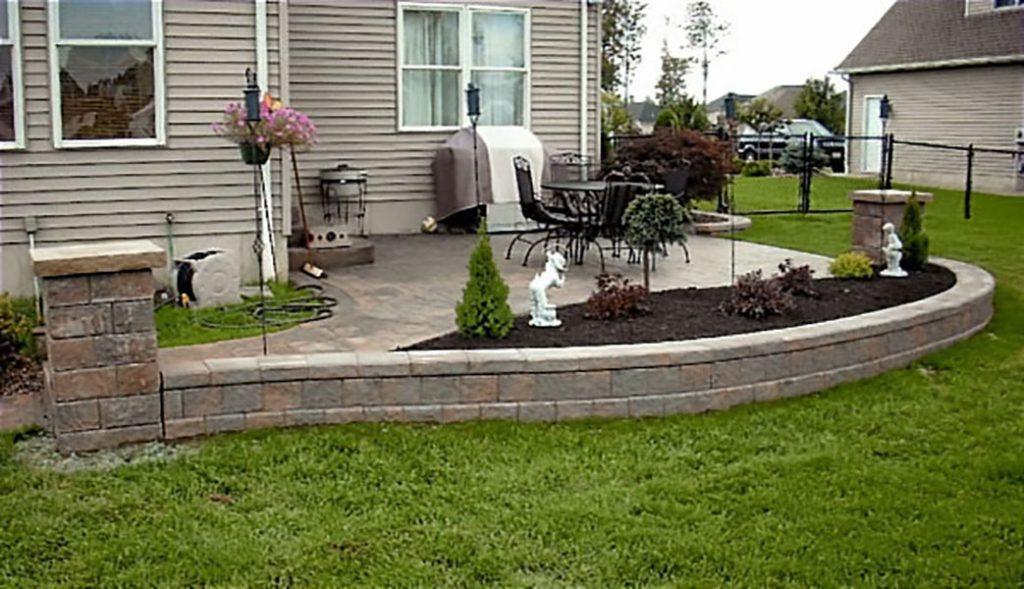 Best Lawn Care Options