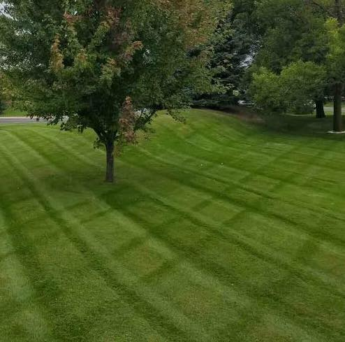 Commercial Lawn Mowing Chicago
