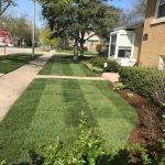 landscaping services western Springs IL