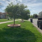 landscaping services western Springs IL 3