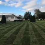 landscaping services western Springs IL 6