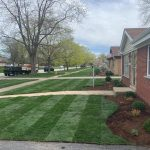 lawn-care-western springs IL