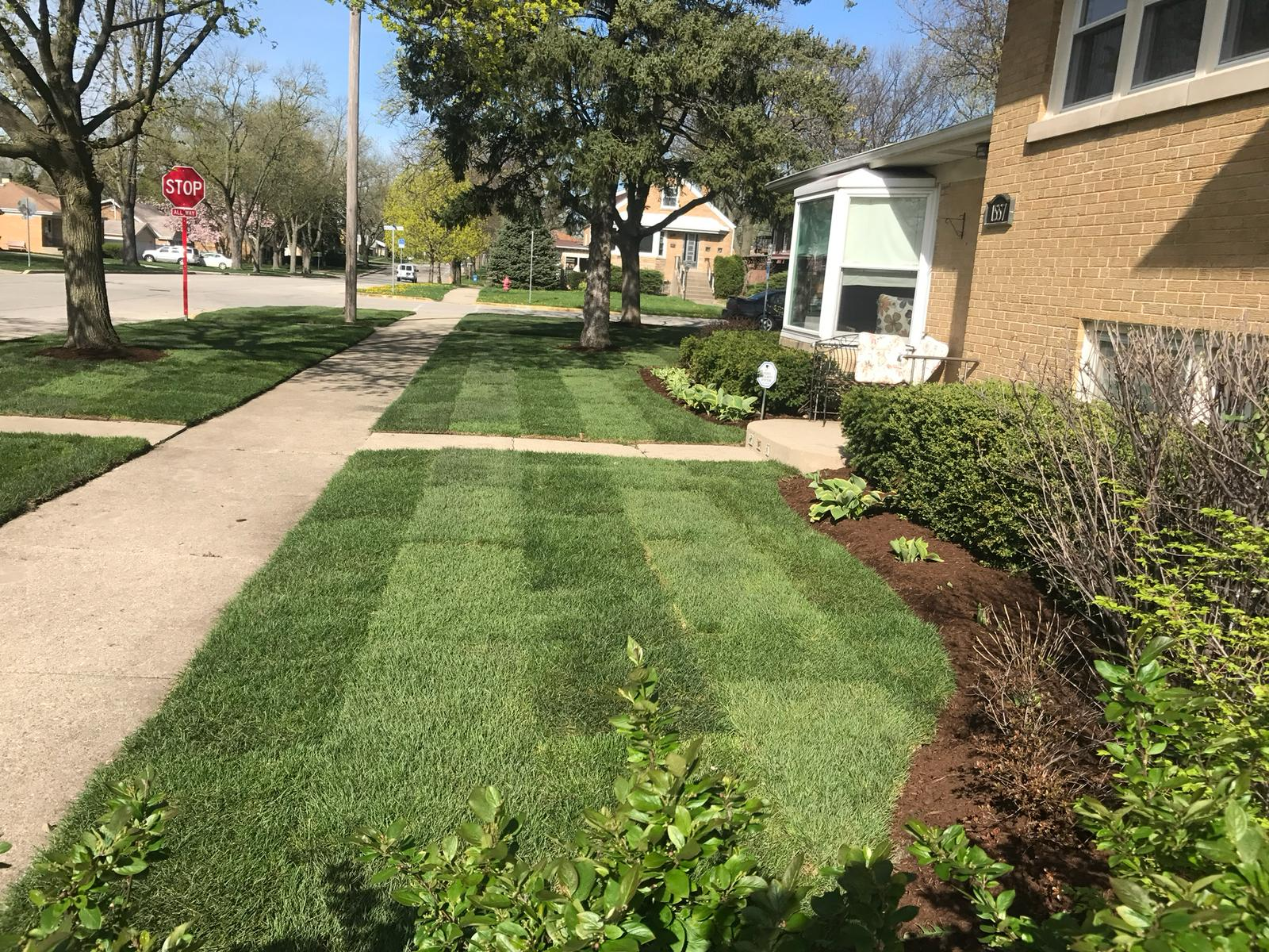 lawn mowing chicago