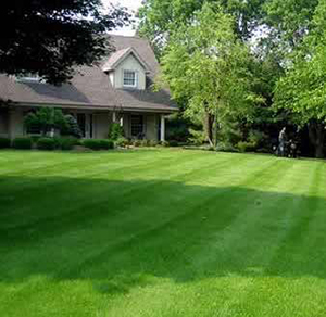 lawn mowing near me-chicago IL