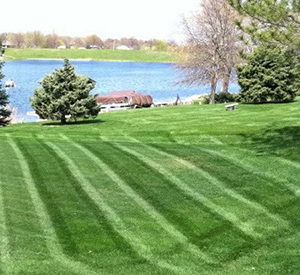 lawn mowing chicago il