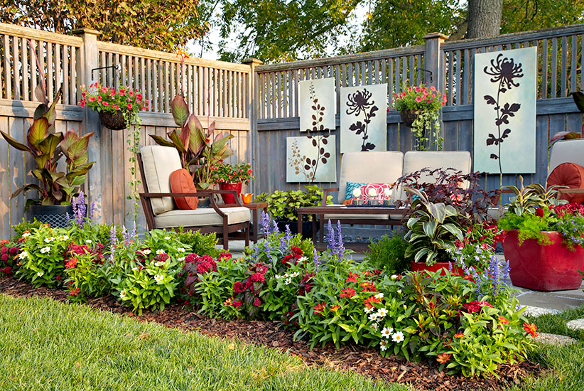 patio garden, plants, trees and flowers